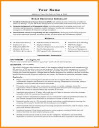 Executive Resume Templates Word Examples 52 Microsoft Word 2007