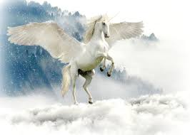 Hasil gambar untuk gambar unicorn