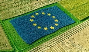 Resultado de imagen para Política Agraria Comunitaria