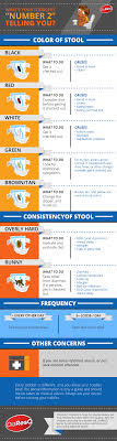 Childrens Stool Chart Whats Your Toddlers Poo Telling You Infographic Diaresq