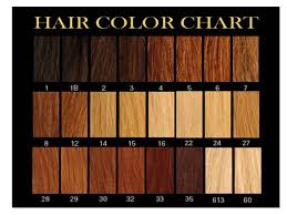 Orange Hair Colour Chart 28 Albums Of Shades Of Natural Red Hair Chart Explore