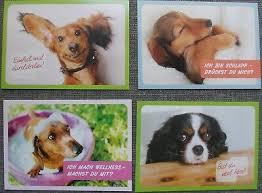 Hunde Postkarten Motivkarten Lustige Sprüche 4 Stück Neu Eur 1