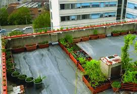5 rooftop garden in bologna credit