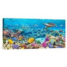 Barrier Reef Coat Rack Coral Reef Wall Art Wayfair 60