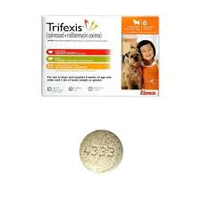 comfortis flea pill for dogs. Comfortis Coupon For Dogs Lbs 6 Tablets Orange Flea Pill Coupons L