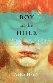 Boy in the Hole by Akiva Hersh | Waterstones