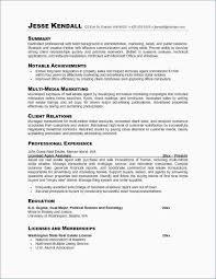 Resume Professional Summary Gorgeous Resume For Education Major Unique Sample Resume Education Resume