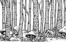 stoner s coloring book treeushrooms