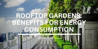 rooftop gardens benefits for energy
