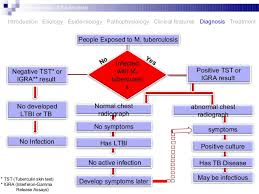 Pathophysiology Of Tuberculosis In Flow Chart Pathogenesis Of Tuberculosis