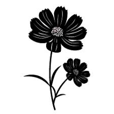 一面のコスモスの花壁紙の無料イラスト素材イラストイメージ