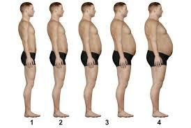 Лечение ожирения и степени ожирение причины Лечение  Степени ожирения