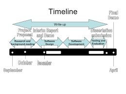 The Final Year Project Process