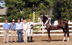 Dream Catcher Stables Dreamcatcher Meadows dressage horses receive new honours 76