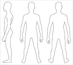 Human Body Outlines Susedia Info