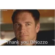 Afbeeldingsresultaat voor goodbye anthony dinozzo
