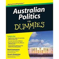booktopia writing essays for dummies by mary page   n politics for dummies for dummies nick economou