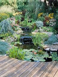 Water Garden Landscaping Ideas Better Homes Gardens Adorable Pond Garden Design