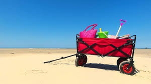 Choosing The Best Beach Wagon For Toddlers Seaside Planet