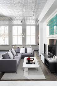 living room ideas ceiling lighting. Modern Living Room Ceiling Lights. Trendy Design Lights Rvaloanofficer Com . Ideas Lighting