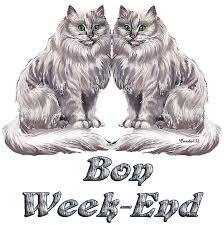 """Résultat de recherche d'images pour """"gif anime bon weekend chaton"""""""