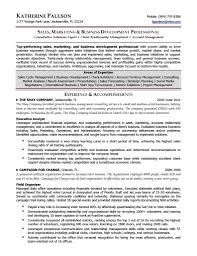 Area Of Expertise Examples For Resume Social Media Manager Resume Resumes Templates Google Docs 98