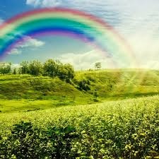 Rainbow On The Meadow Abstract Natural Stock Photo Colourbox