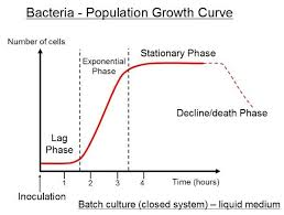 Exponential Growth Chart Pin By Jessica Joyce On Microbiology Exponential Growth