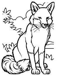 Small Picture Nice and cute Fox coloring pages images for Kids NiceImagesorg