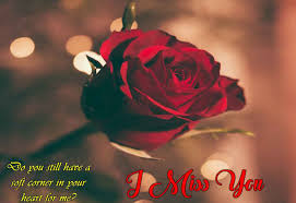 Best Red Rose Flower Wallpaper Download ...
