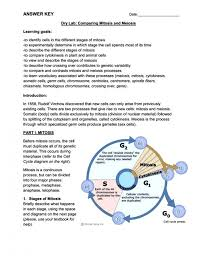 Comparing Mitosis And Meiosis Venn Diagram Meiosis Venn Worksheet Answers Admirably Pictures