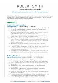 Route Sales Representative Resume Sales Representative Resume