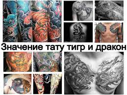 значение тату тигр и дракон информация о рисунке и фото примеры