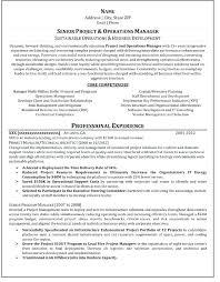 Free Resume Writing Service Prnstars Info