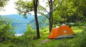 riverside camping in shivpuri