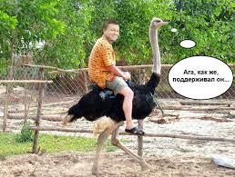 Янукович ежемесячно выводил 2 млрд гривен из Днепропетровщины, - замгенпрокурора Енин - Цензор.НЕТ 6194