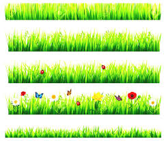Small Picture Garden Borders Clipart Flower garden borders clipart clipartfest