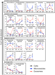 Lipid Class Enrichment In Evs Depends On Vesicle Type And
