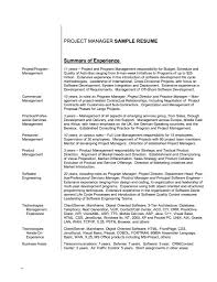 Resume Professional Summary Examples Resume Cover Letter