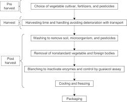 Frozen Vegetable An Overview Sciencedirect Topics