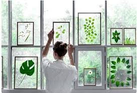 details about diy natural glass framed dried floating plants flowers wood photo picture frame