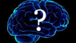 Los diez mitos sobre el cerebro:Sólo utilizamos el 10 por ciento de su  cerebro