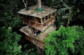 14. Eco-friendly Finca Bellavista Treehouse (Costa Rica). This tree house  ...