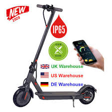 NEW ADULT ELECTRIC SCOOTER BATTERY 36V MOTOR 350W ...