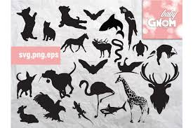 This includes this image in svg , png, and jpeg formate. Free Zoo Animal Svg Download Free And Premium Svg Cut Files