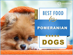 Canidae Dog Food Feeding Chart 8 Best Pomeranian Dog Foods For Adult And Puppy Pomeranians