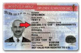 my alien registration number