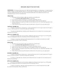 Generic Objective For Resume New Generic Resume Objectives Best Resume Template Whizzme