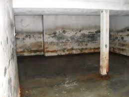 How To Kill Basement Mold  DoItYourselfcomMold In Basement
