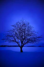 Beautiful Blue Wallpapers - Top Free ...